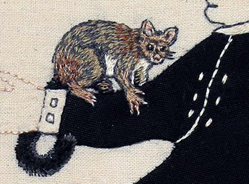 Detail: Trade Item – Opossum, Rata, Kamahi.